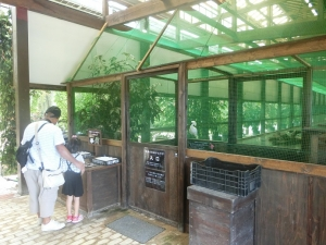 加茂荘16