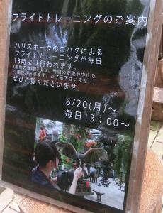加茂荘20
