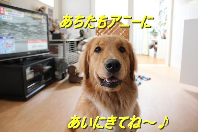 IMG_2987.jpg