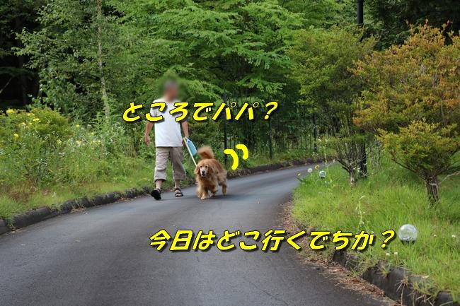 IMG_4566.jpg