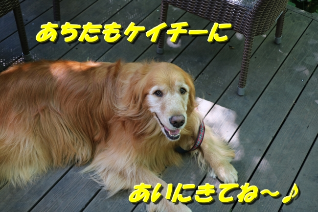 IMG_4726.jpg