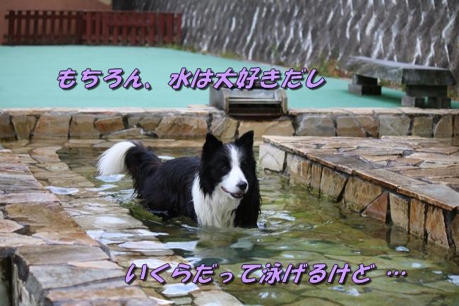 IMG_4866.jpg