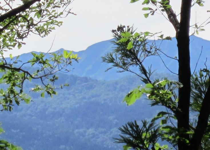 大前山から見た白山