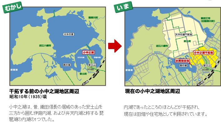 琵琶湖干拓