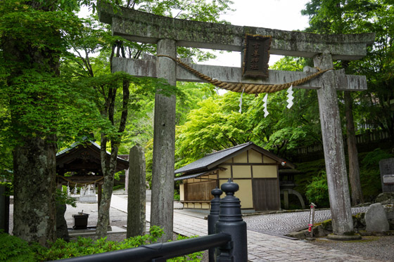 201605tochigi09.jpg