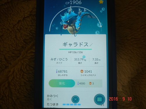 DSC09389.jpg
