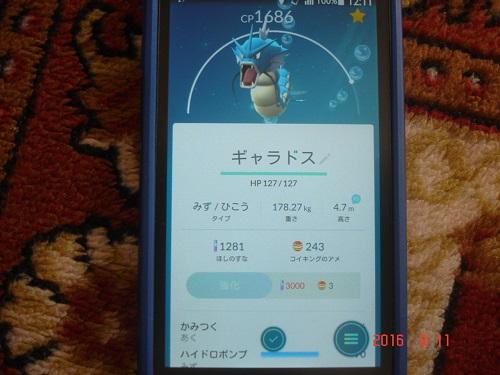 DSC09437.jpg