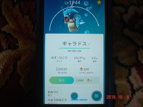 DSC09853.jpg
