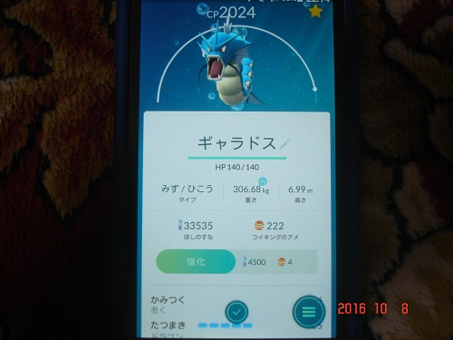 DSC09858.jpg