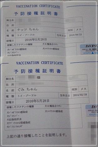 ワクチン終了☆(ナツぐー(