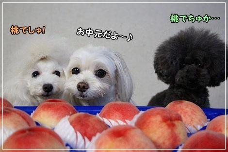 桃のお中元と3姉妹