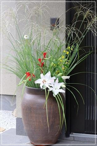 玄関前のお花がキレイ!!!