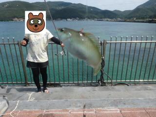 丹生漁港環境広場釣り桟橋