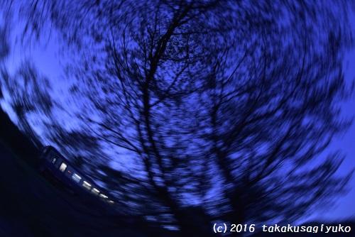 DSC_1534a_01.jpg