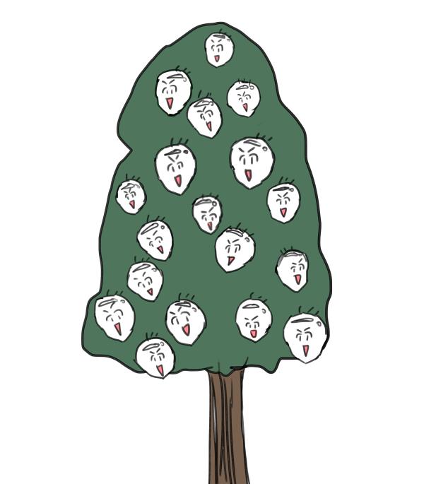 Boriのなる木