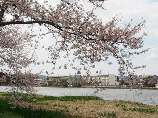 20160411・高田城4