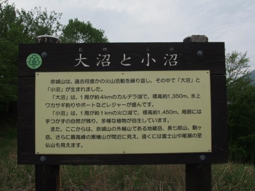 20160529・群馬ツツジ旅7-12・大