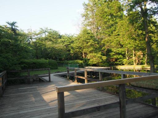 20160605・智光山公園2-07