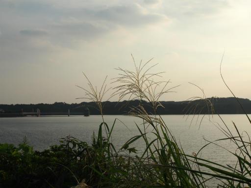 20161002・荒幡富士から狭山湖空2-12