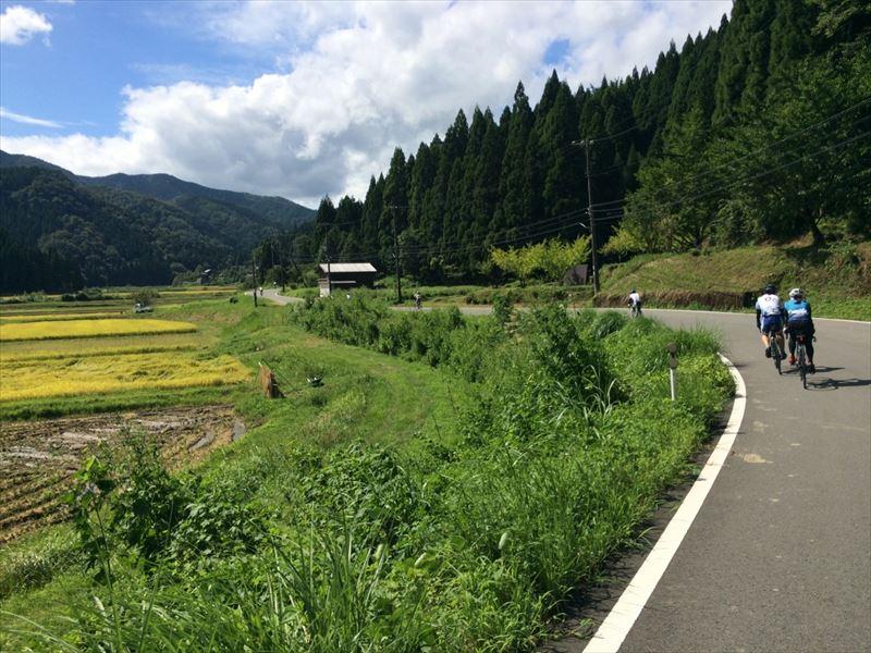 IMG__kounotori_007.jpg