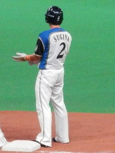2sugiya201610w.jpg