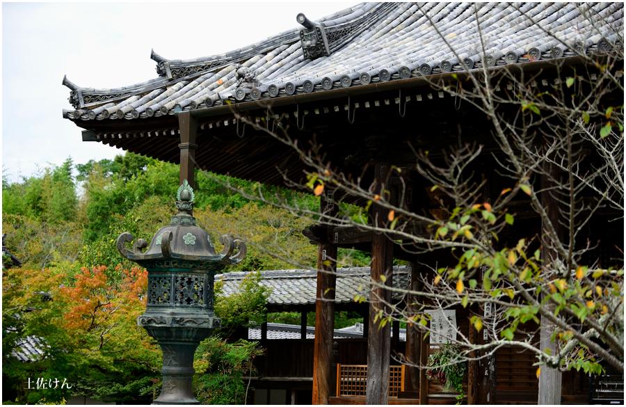 亀岡・穴太寺