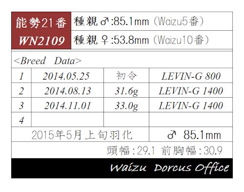 WN2109-851.jpg