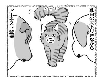 01082016_cat3.jpg