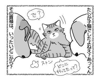 01082016_cat4.jpg