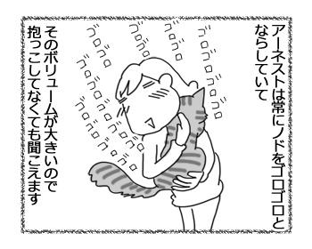 02062016_cat1.jpg