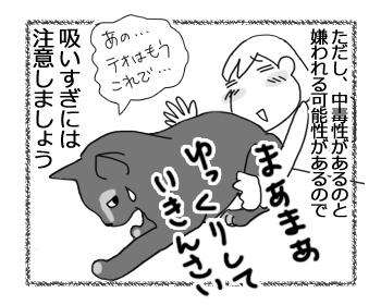 05082016_cat4.jpg