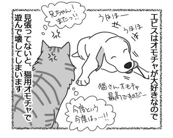 06092016_cat1.jpg