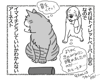 06092016_cat4.jpg