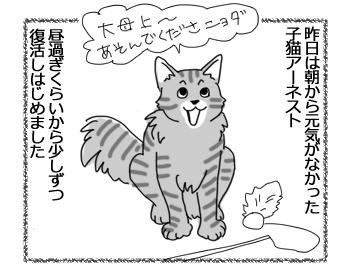 羊の国のビッグフット「君は猫!」1