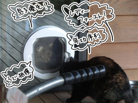 羊の国のビッグフット「猫ドアのドラマ」4