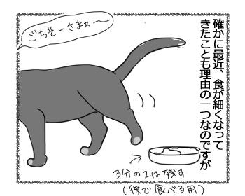 07102016_cat2.jpg