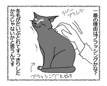 07102016_cat3.jpg