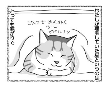 08092016_cat1.jpg