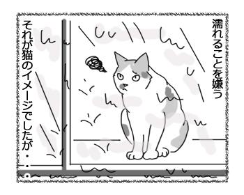 08092016_cat2.jpg