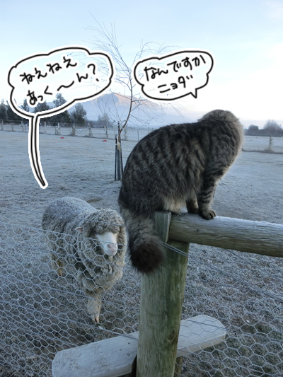 羊の国のビッグフット「日曜日」2