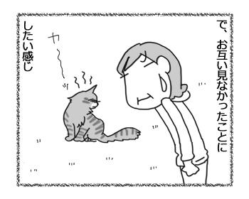 11102016_cat4.jpg