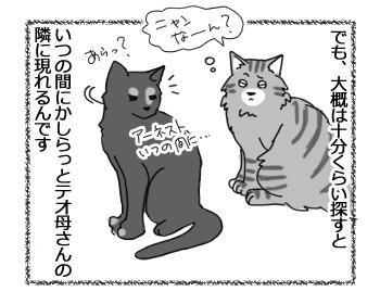 12092016_cat3.jpg