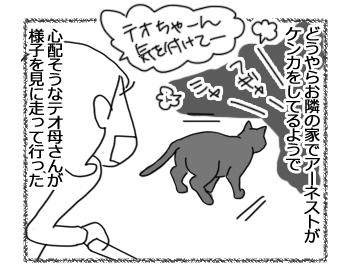 16092016_cat2.jpg