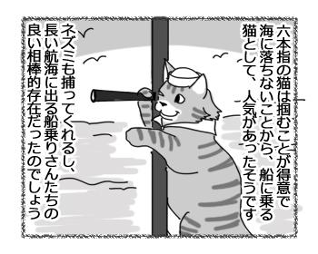 17102016_cat1.jpg