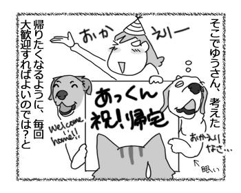 18102016_cat2.jpg