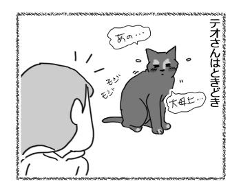 19102016_cat1.jpg