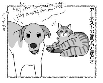 19102016_cat3.jpg