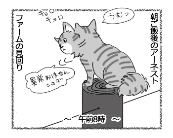 20062016_cat1.jpg