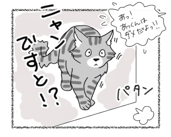 22082016_cat3.jpg