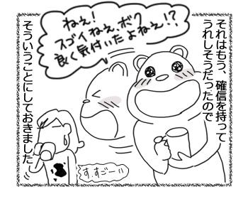 25062016_cat4.jpg